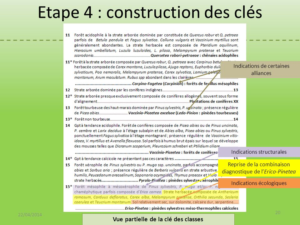Etape 4 : construction des clés 22/04/2014 20 Vue partielle de la clé des classes Reprise de la combinaison diagnostique de lErico-Pinetea Indications