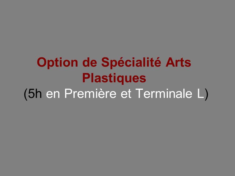 Option de Spécialité Arts Plastiques (5h en Première et Terminale L)