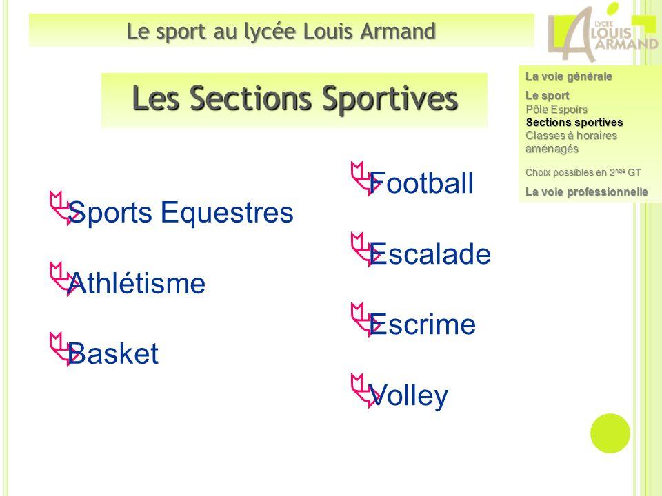 Les Sections Sportives Sports Equestres Athlétisme Basket Football Escalade Escrime Volley Le sport au lycée Louis Armand La voie générale Le sport Pô