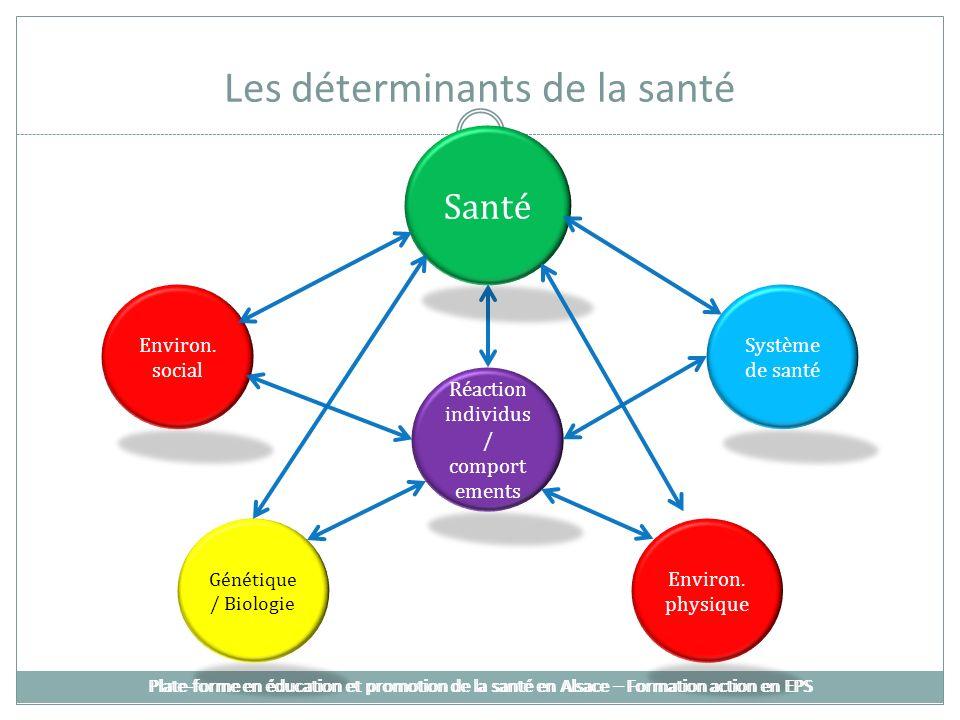 Les déterminants de la santé Santé Système de santé Environ. social Réaction individus / comport ements Génétique / Biologie Environ. physique Plate-f