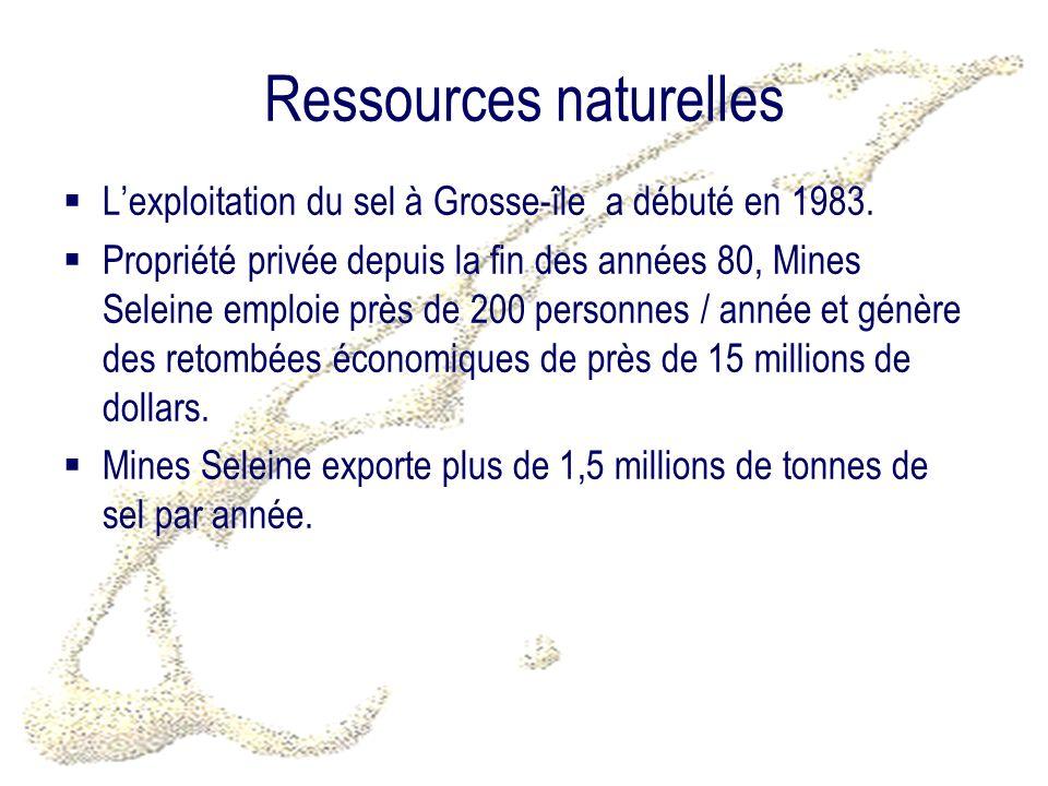 Ressources naturelles Lexploitation du sel à Grosse-île a débuté en 1983.