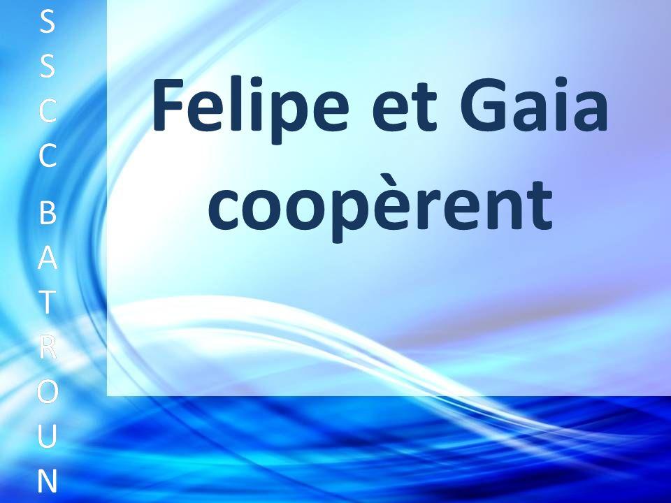 Felipe et Gaia coopèrent SSCC BATROUNSSCC BATROUN S S C C B A T R O U N