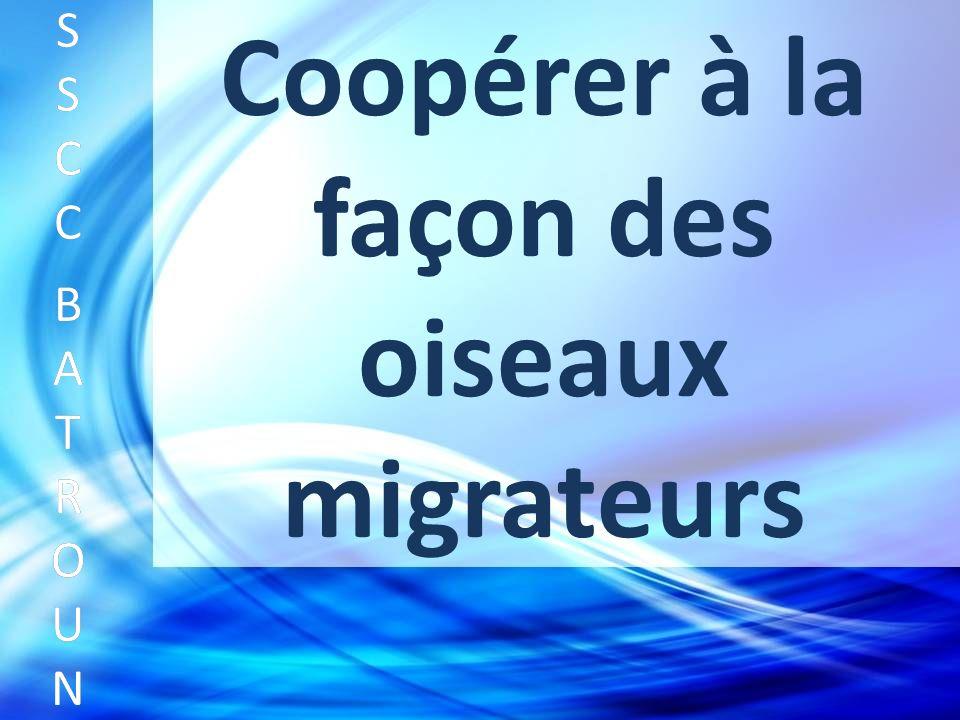 Coopérer à la façon des oiseaux migrateurs SSCC BATROUNSSCC BATROUN S S C C B A T R O U N