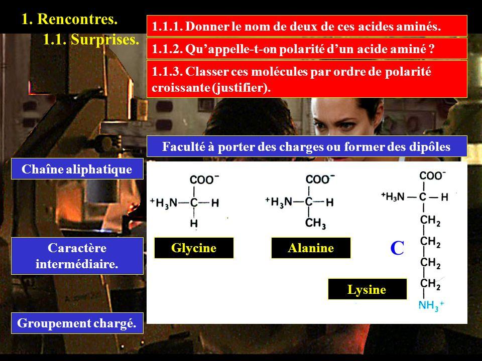 1. Rencontres. 1.1. Surprises. 1.1.1. Donner le nom de deux de ces acides aminés. GlycineAlanine Lysine 1.1.2. Quappelle-t-on polarité dun acide aminé