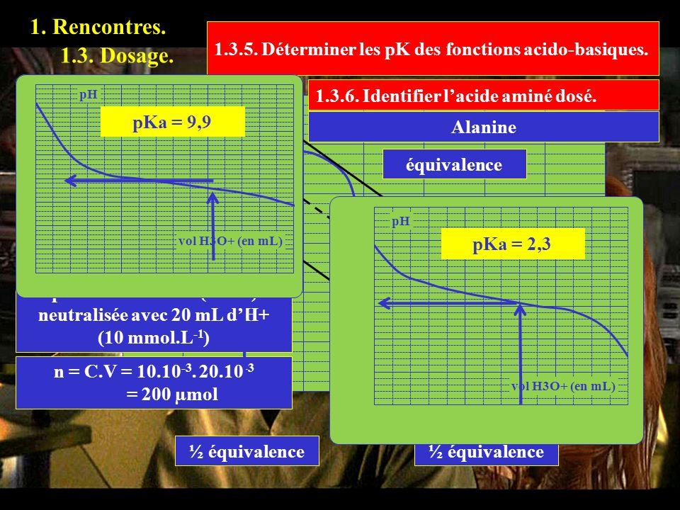 1. Rencontres. 1.3.4. Calculer la quantité dacide aminé présent dans la solution dosée. 1.3. Dosage. équivalence La première fonction (-NH2) est neutr