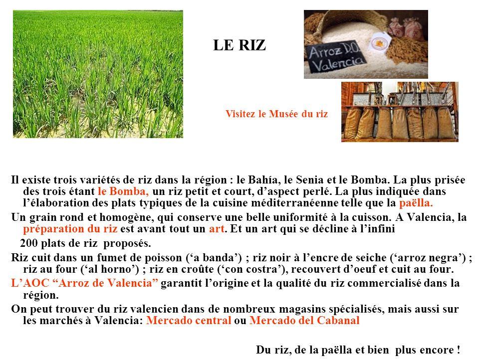 LE RIZ Il existe trois variétés de riz dans la région : le Bahía, le Senia et le Bomba. La plus prisée des trois étant le Bomba, un riz petit et court