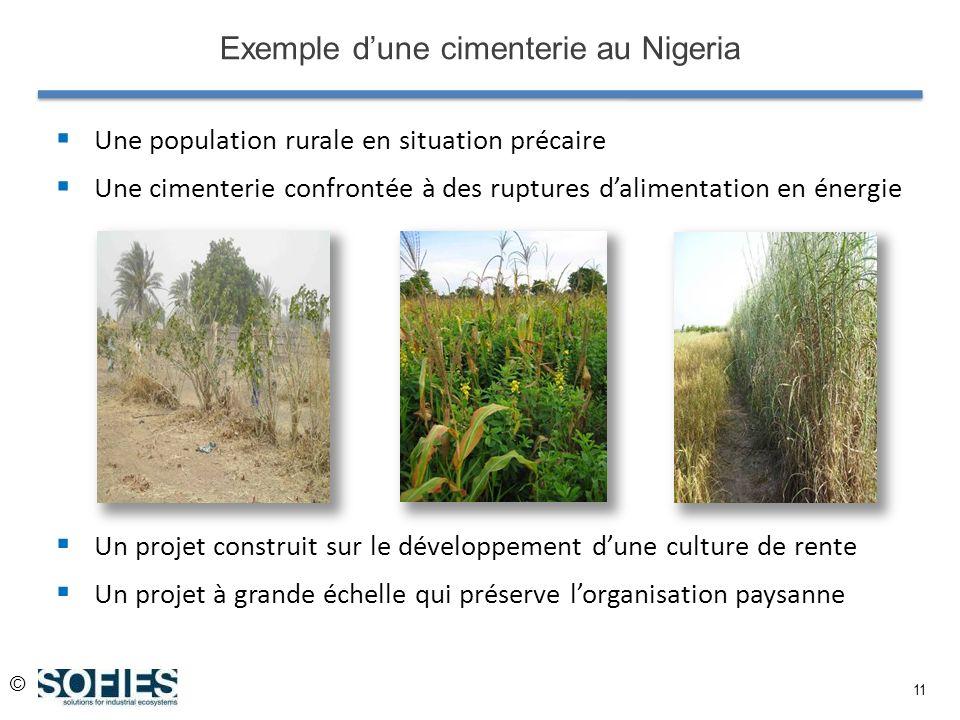© 11 Exemple dune cimenterie au Nigeria Une population rurale en situation précaire Une cimenterie confrontée à des ruptures dalimentation en énergie Un projet construit sur le développement dune culture de rente Un projet à grande échelle qui préserve lorganisation paysanne