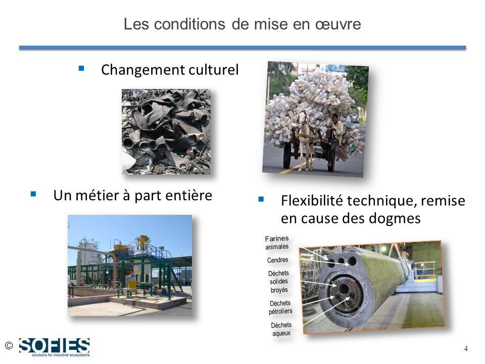 © 4 Changement culturel Les conditions de mise en œuvre Un métier à part entière