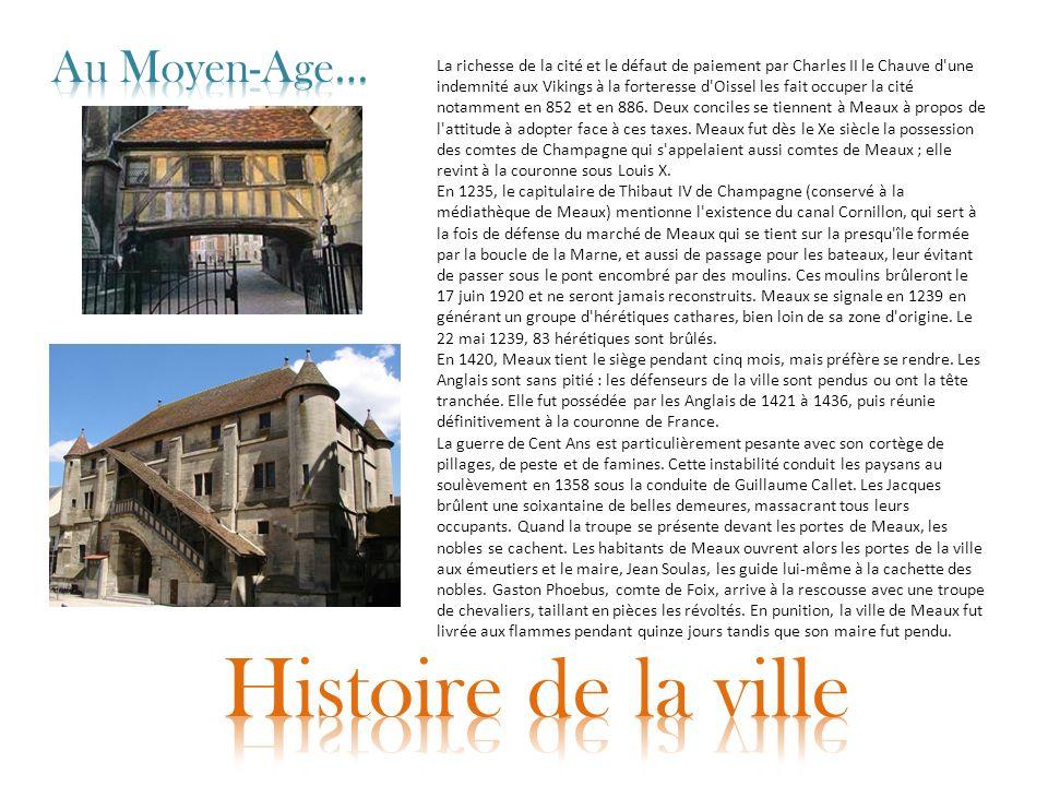 La richesse de la cité et le défaut de paiement par Charles II le Chauve d'une indemnité aux Vikings à la forteresse d'Oissel les fait occuper la cité
