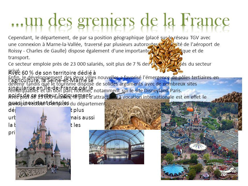 Avec 60 % de son territoire dédié à l'agriculture, la Seine-et-Marne se singularise en Île-de-France par le poids de ce secteur logiquement quasi inex