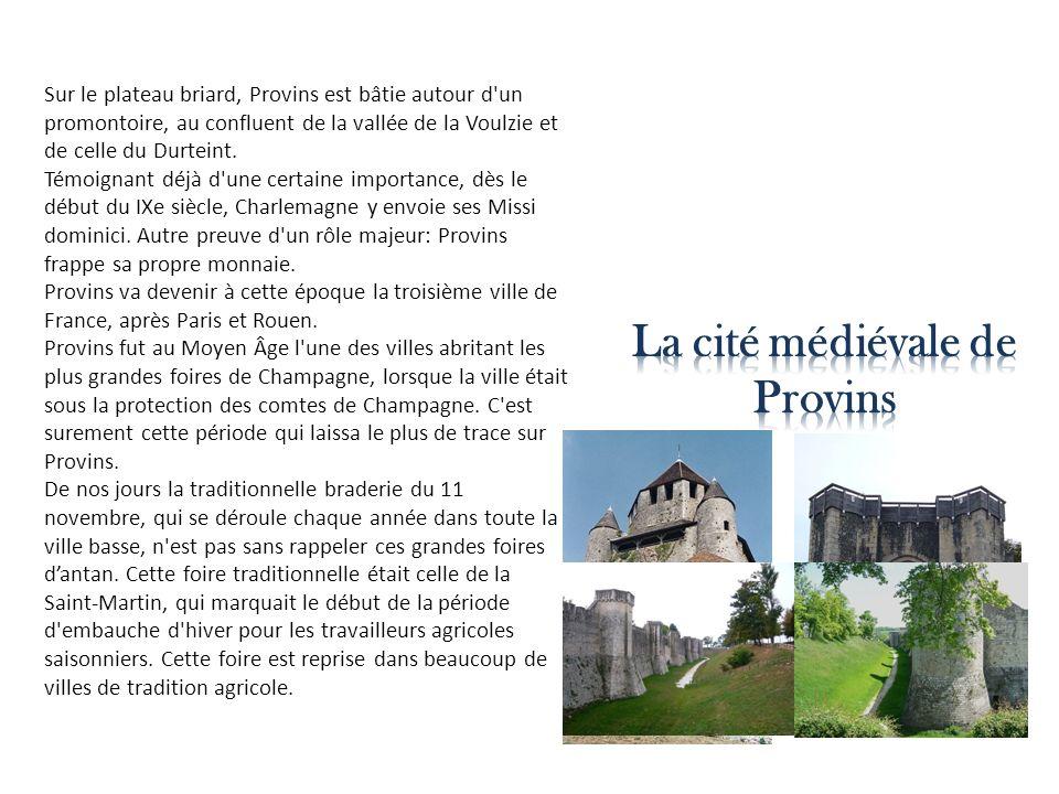 Sur le plateau briard, Provins est bâtie autour d'un promontoire, au confluent de la vallée de la Voulzie et de celle du Durteint. Témoignant déjà d'u