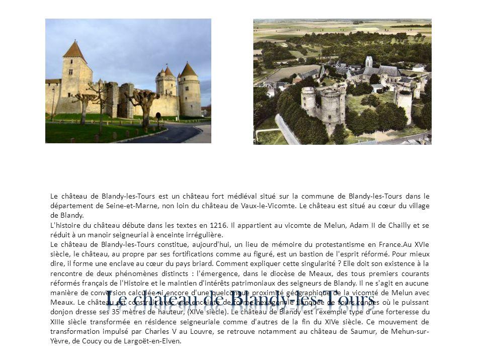 Le château de Blandy-les-Tours est un château fort médiéval situé sur la commune de Blandy-les-Tours dans le département de Seine-et-Marne, non loin d