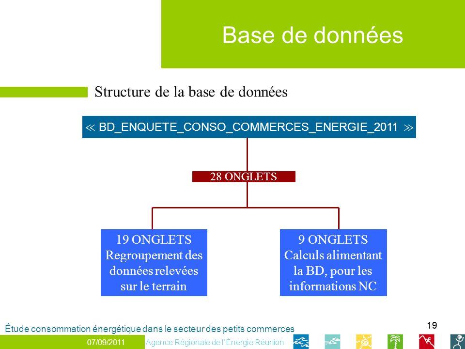 19 Structure de la base de données BD_ENQUETE_CONSO_COMMERCES_ENERGIE_2011 28 ONGLETS 19 ONGLETS Regroupement des données relevées sur le terrain 9 ONGLETS Calculs alimentant la BD, pour les informations NC Base de données 07/07/2011 Étude consommation énergétique dans le secteur des petits commerces Agence Régionale de lÉnergie Réunion 07/09/2011