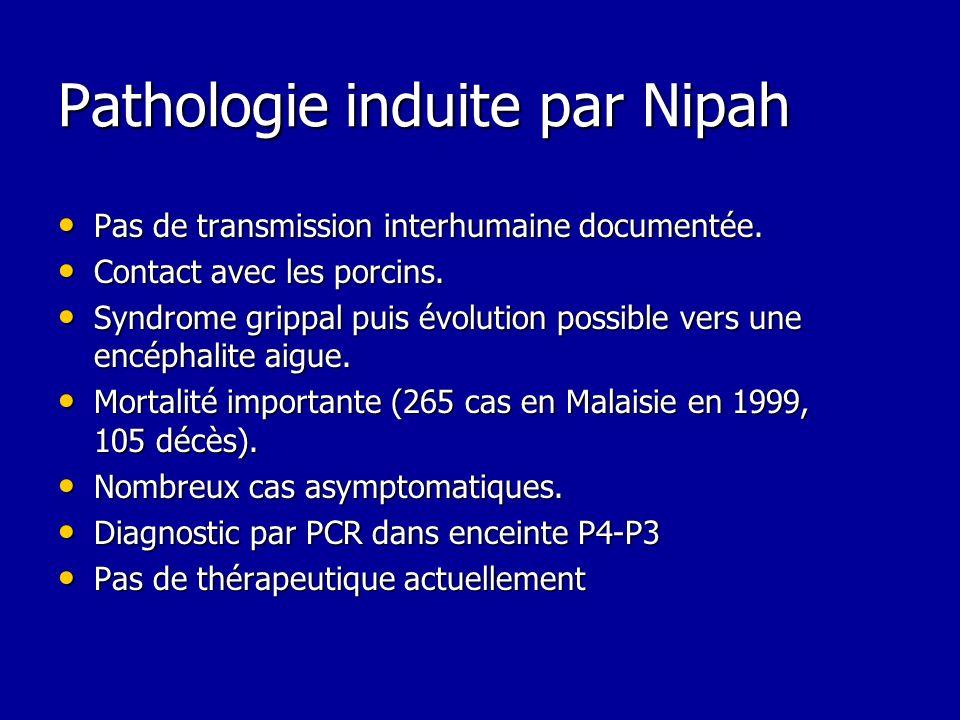 Pathologie induite par Nipah Pas de transmission interhumaine documentée. Pas de transmission interhumaine documentée. Contact avec les porcins. Conta