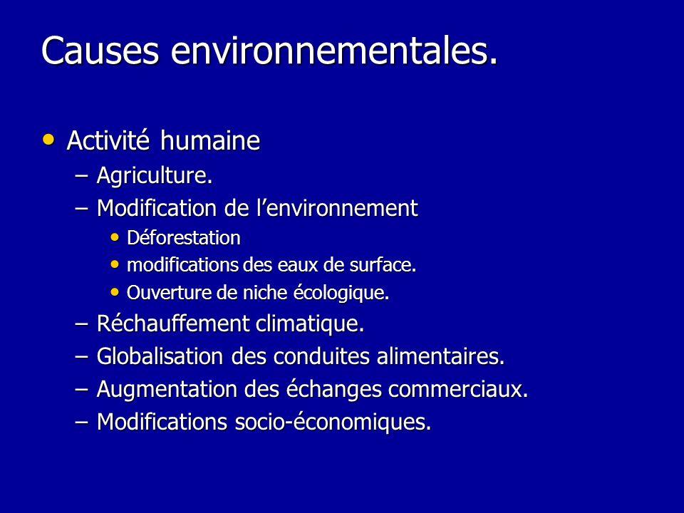 Causes environnementales. Activité humaine Activité humaine –Agriculture. –Modification de lenvironnement Déforestation Déforestation modifications de