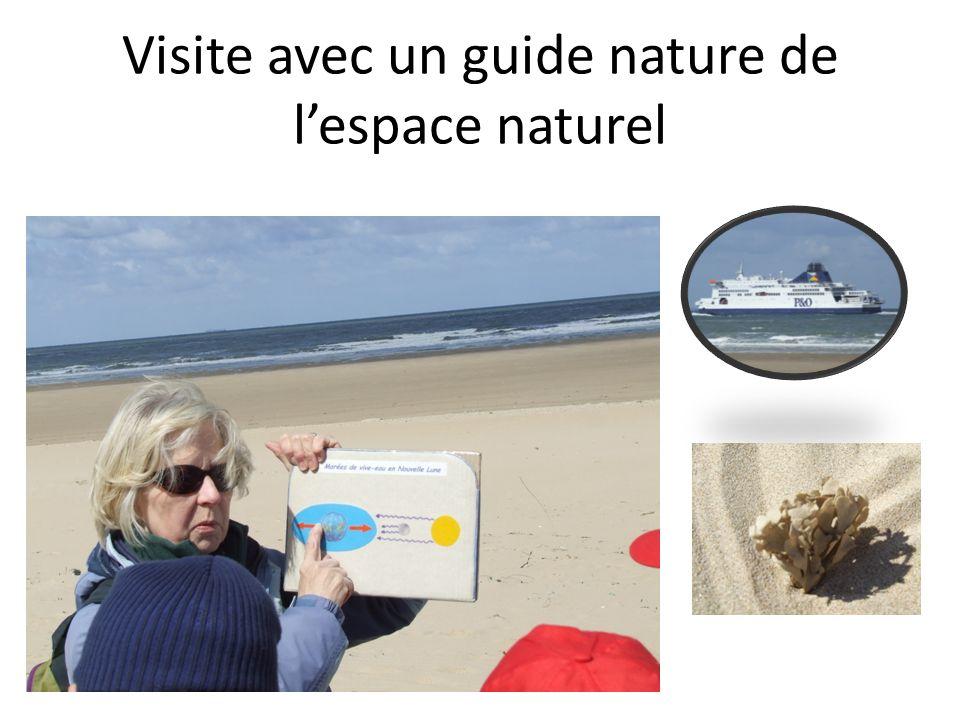Visite avec un guide nature de lespace naturel