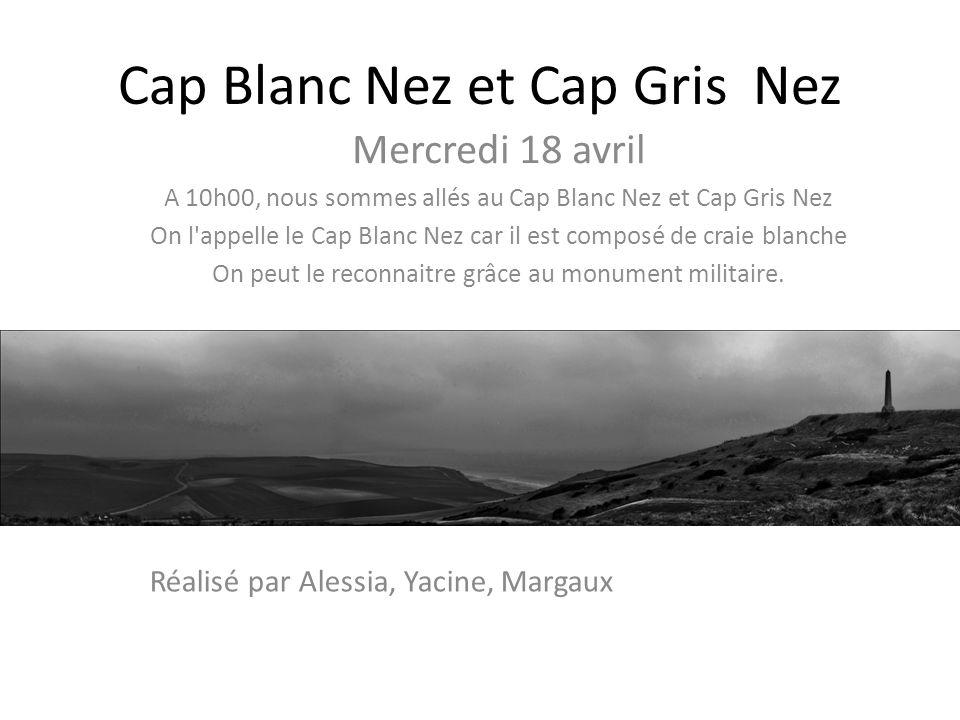 Cap Blanc Nez et Cap Gris Nez Mercredi 18 avril A 10h00, nous sommes allés au Cap Blanc Nez et Cap Gris Nez On l appelle le Cap Blanc Nez car il est composé de craie blanche On peut le reconnaitre grâce au monument militaire.