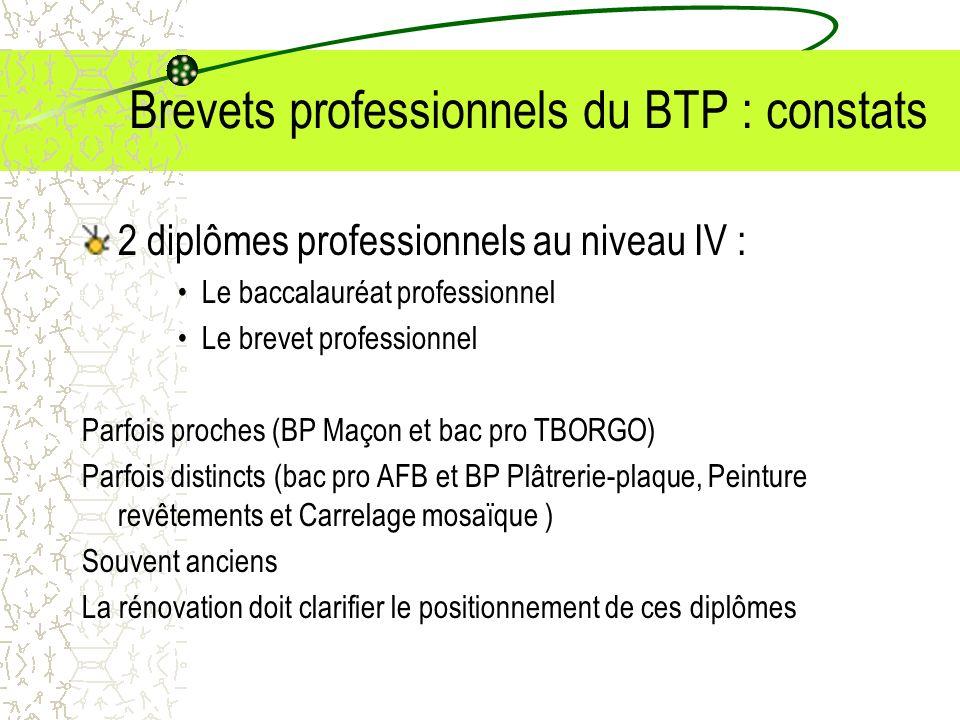 Brevets professionnels du BTP : constats 2 diplômes professionnels au niveau IV : Le baccalauréat professionnel Le brevet professionnel Parfois proche