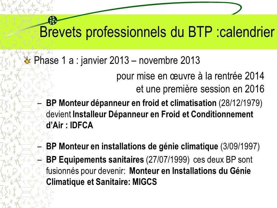 Brevets professionnels du BTP :calendrier Phase 1 a : janvier 2013 – novembre 2013 pour mise en œuvre à la rentrée 2014 et une première session en 201