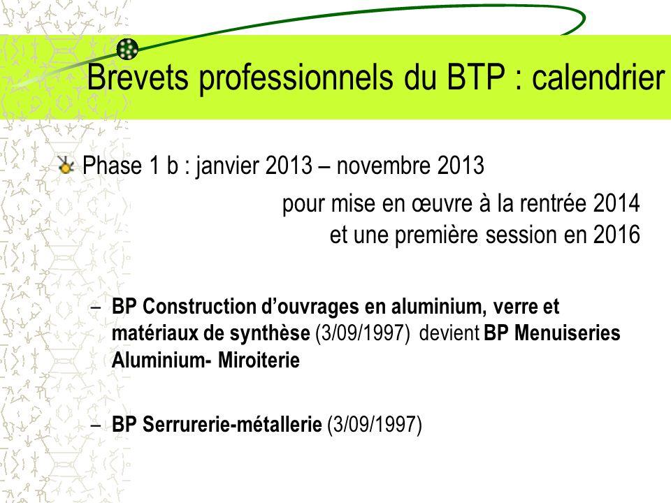 Brevets professionnels du BTP : calendrier Phase 1 b : janvier 2013 – novembre 2013 pour mise en œuvre à la rentrée 2014 et une première session en 20