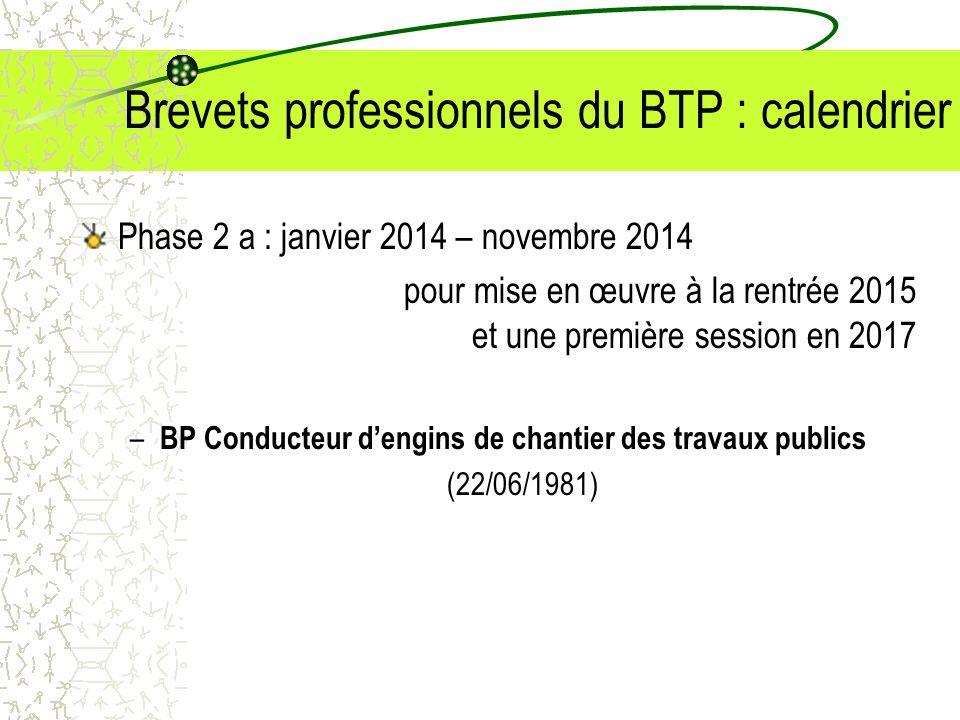 Brevets professionnels du BTP : calendrier Phase 2 a : janvier 2014 – novembre 2014 pour mise en œuvre à la rentrée 2015 et une première session en 20