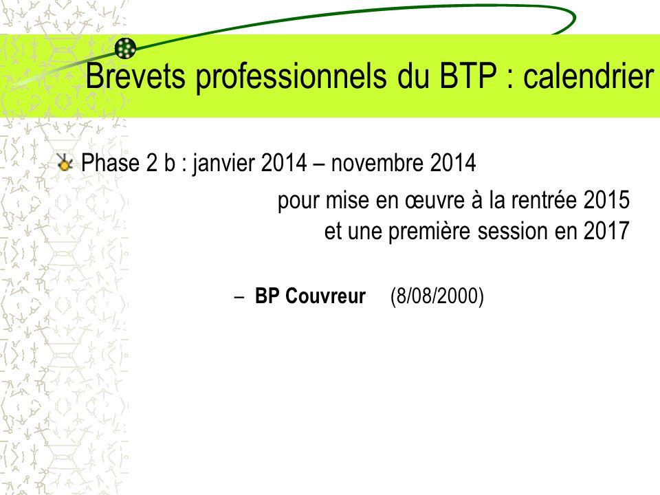 Brevets professionnels du BTP : calendrier Phase 2 b : janvier 2014 – novembre 2014 pour mise en œuvre à la rentrée 2015 et une première session en 20