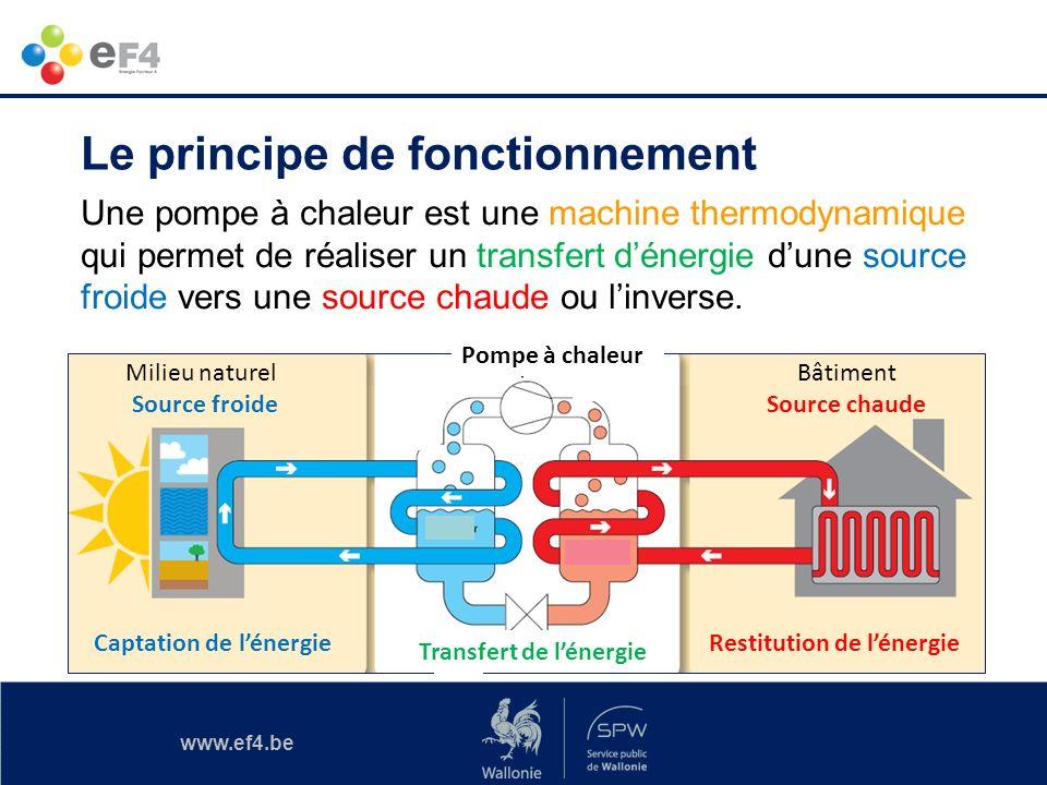www.ef4.be Le principe de fonctionnement Milieu naturel Source froide Pompe à chaleur Bâtiment Source chaude Captation de lénergie Transfert de lénerg
