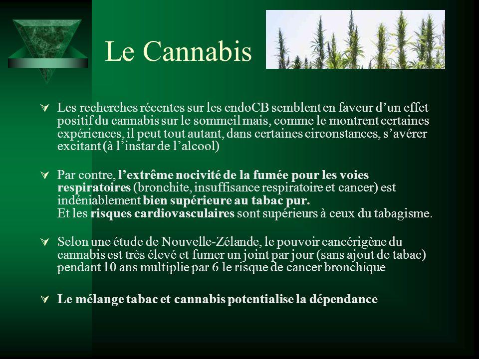 Le Cannabis Les recherches récentes sur les endoCB semblent en faveur dun effet positif du cannabis sur le sommeil mais, comme le montrent certaines e