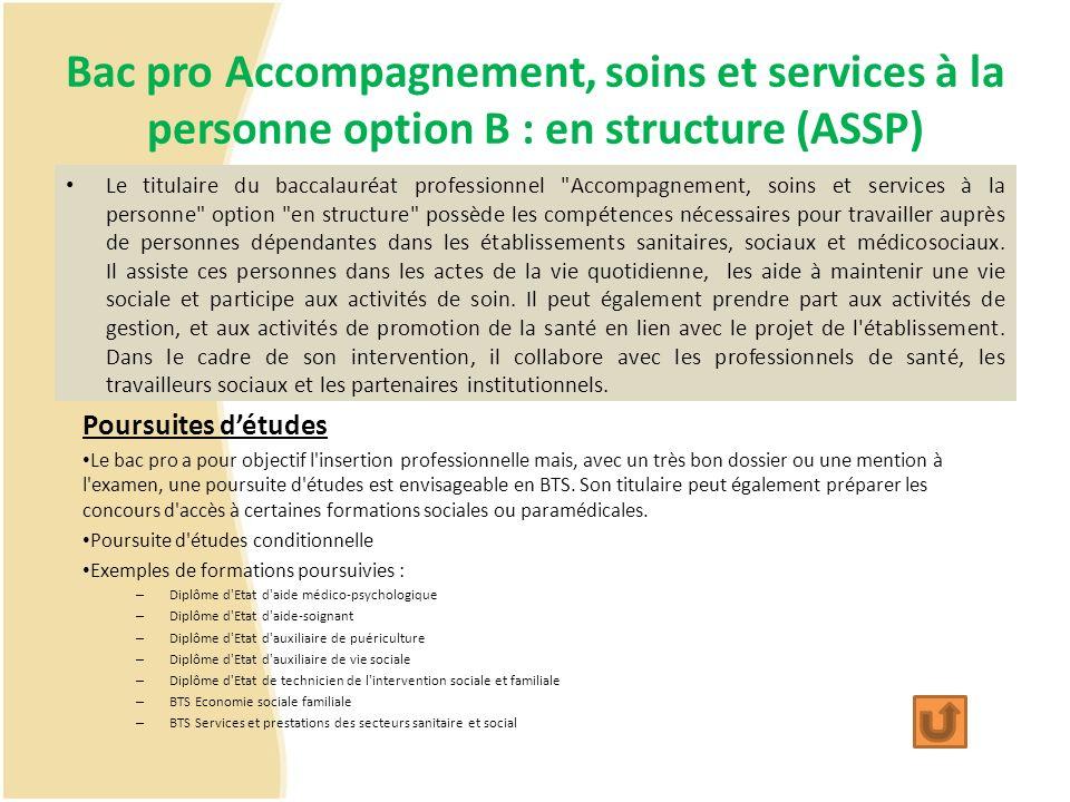 Bac pro Accompagnement, soins et services à la personne option B : en structure (ASSP) Le titulaire du baccalauréat professionnel