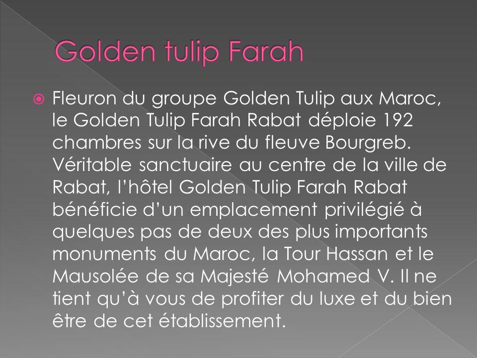 le Groupe Louvre Hotels Fait des Promesses au Maroc : Louvre Hôtels relance son programme d'investissement dans plusieurs hôtels au Maroc. Le présiden