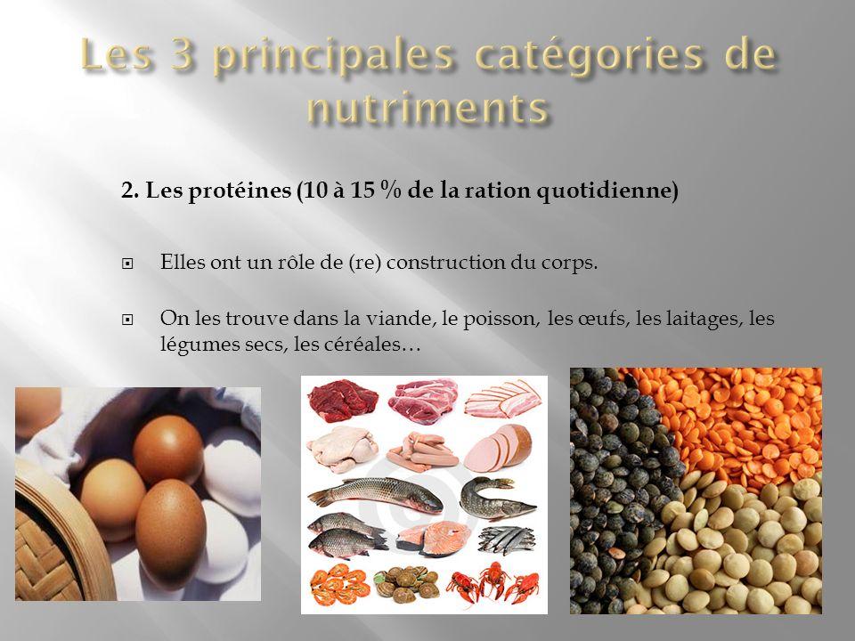 2. Les protéines (10 à 15 % de la ration quotidienne) Elles ont un rôle de (re) construction du corps. On les trouve dans la viande, le poisson, les œ