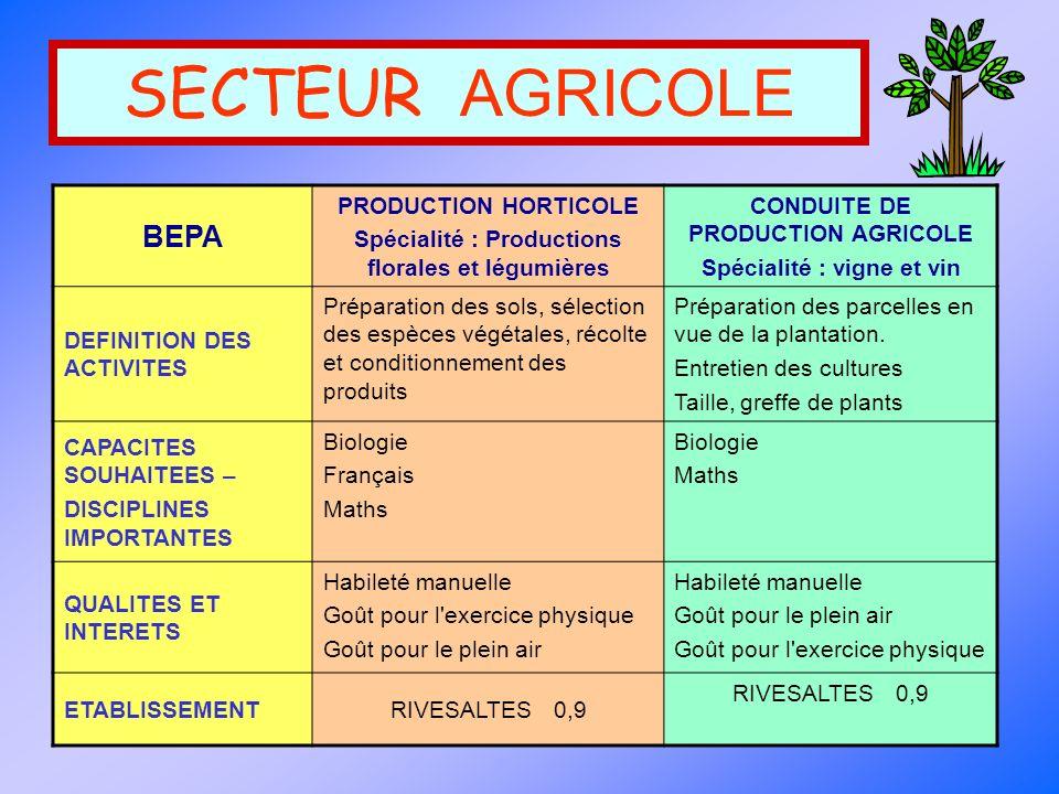 SECTEUR AGRICOLE BEPA PRODUCTION HORTICOLE Spécialité : Productions florales et légumières CONDUITE DE PRODUCTION AGRICOLE Spécialité : vigne et vin D