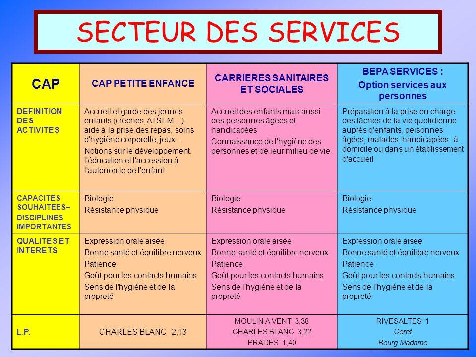 SECTEUR DES SERVICES CAP CAP PETITE ENFANCE CARRIERES SANITAIRES ET SOCIALES BEPA SERVICES : Option services aux personnes DEFINITION DES ACTIVITES Ac