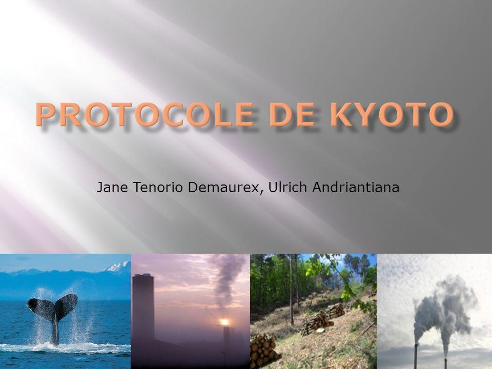 1 ère Partie: Le Protocole de Kyoto Contexte historique Sommet de Rio CCNUCC et le Protocole Arguments Objectifs Instruments juridiques Mécanisme Calendrier Bilan 2 ème Partie: Enjeux institutionnels Post –Kyoto Rappel Projets MDP et développement durable Les négociations sur lAprès Kyoto.