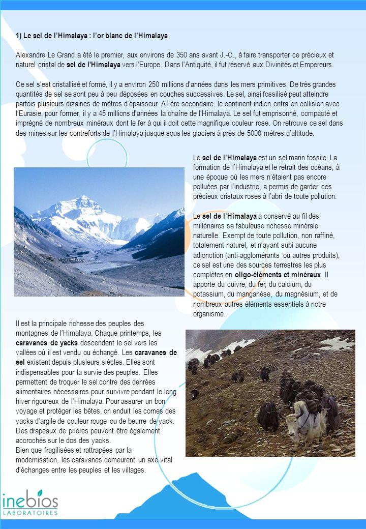 1) Le sel de lHimalaya : lor blanc de lHimalaya Alexandre Le Grand a été le premier, aux environs de 350 ans avant J.-C., à faire transporter ce préci