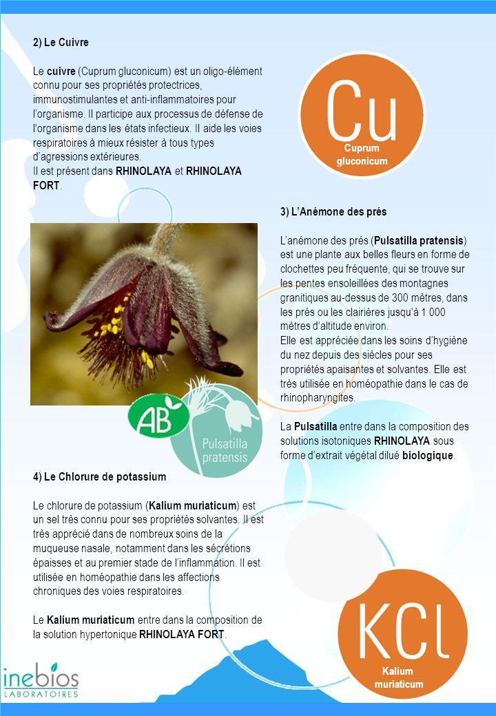 2) Le Cuivre Le cuivre (Cuprum gluconicum) est un oligo-élément connu pour ses propriétés protectrices, immunostimulantes et anti-inflammatoires pour