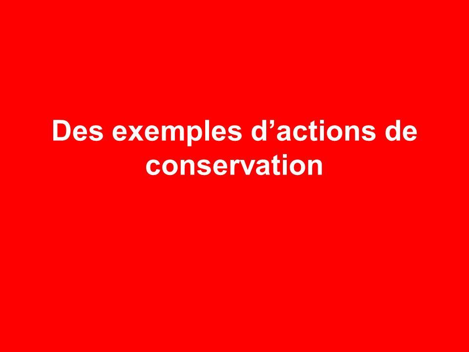 Des exemples dactions de conservation
