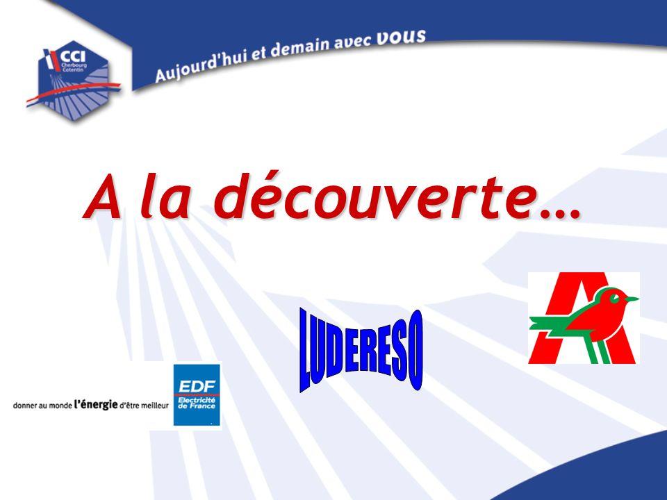CNPE Flamanville Organisation des Achats Présenté par Michel BLONDET Présenté par Michel BLONDET