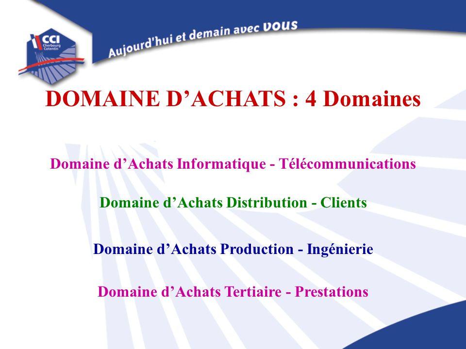 Domaine dAchats Informatique - Télécommunications Domaine dAchats Distribution - Clients Domaine dAchats Production - Ingénierie Domaine dAchats Terti