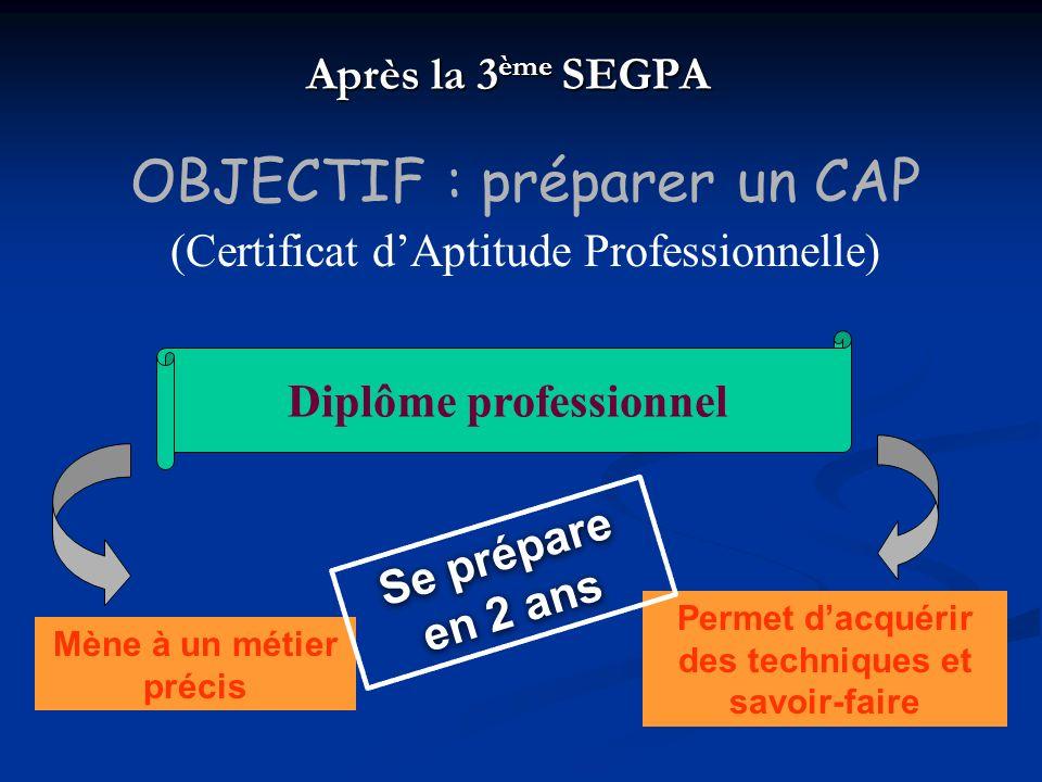 Après la 3 ème SEGPA Mène à un métier précis Diplôme professionnel Permet dacquérir des techniques et savoir-faire Se prépare en 2 ans OBJECTIF : prép
