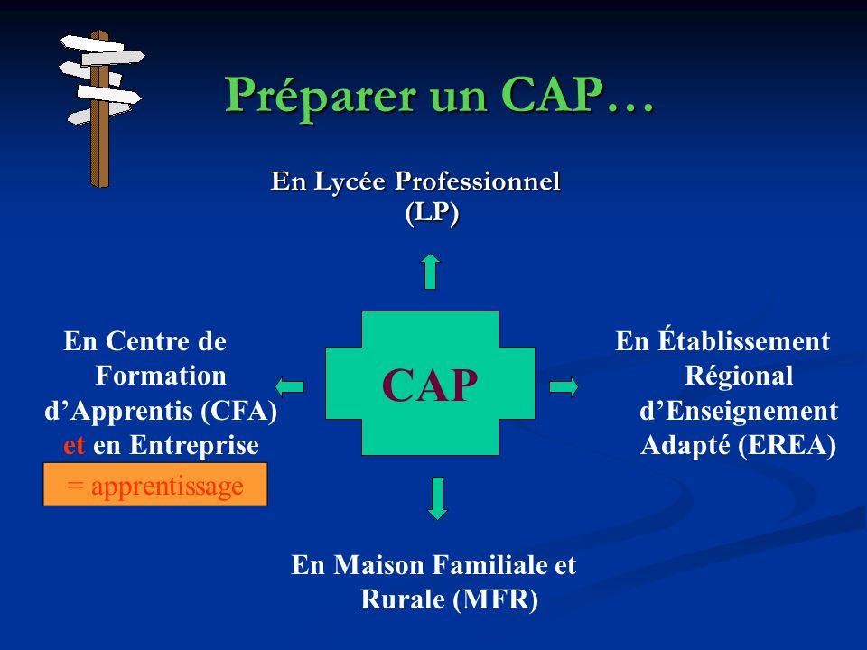 Préparer un CAP… En Lycée Professionnel (LP) CAP En Maison Familiale et Rurale (MFR) En Centre de Formation dApprentis (CFA) et en Entreprise En Établ