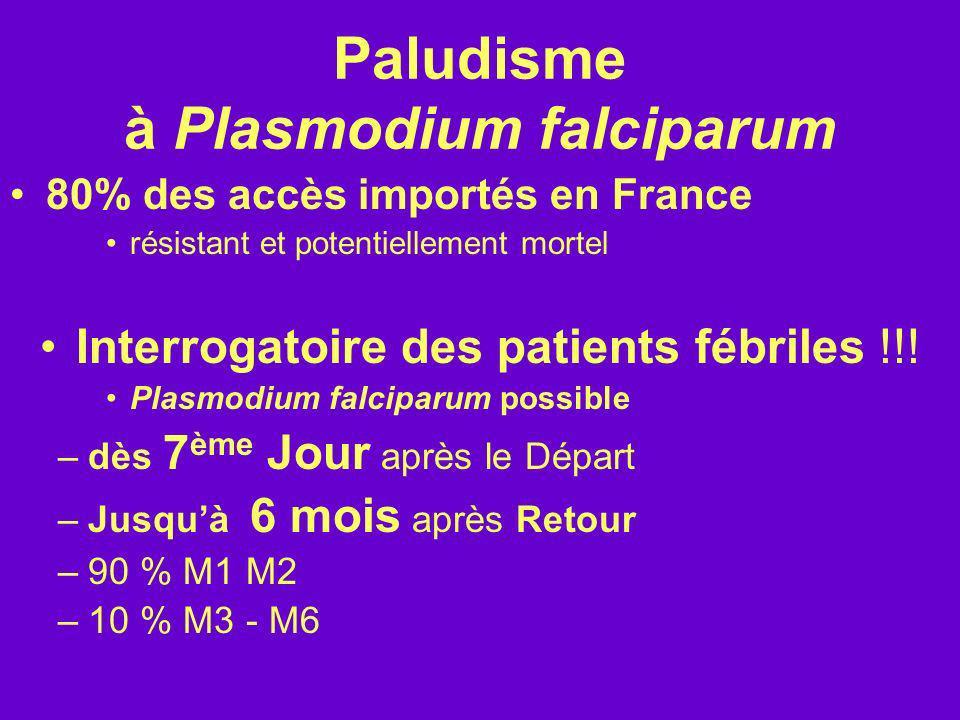 Paludisme à Plasmodium falciparum 80% des accès importés en France résistant et potentiellement mortel Interrogatoire des patients fébriles !!! Plasmo