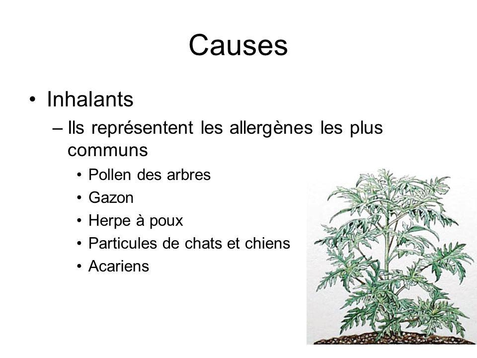 Causes Inhalants –Ils représentent les allergènes les plus communs Pollen des arbres Gazon Herpe à poux Particules de chats et chiens Acariens