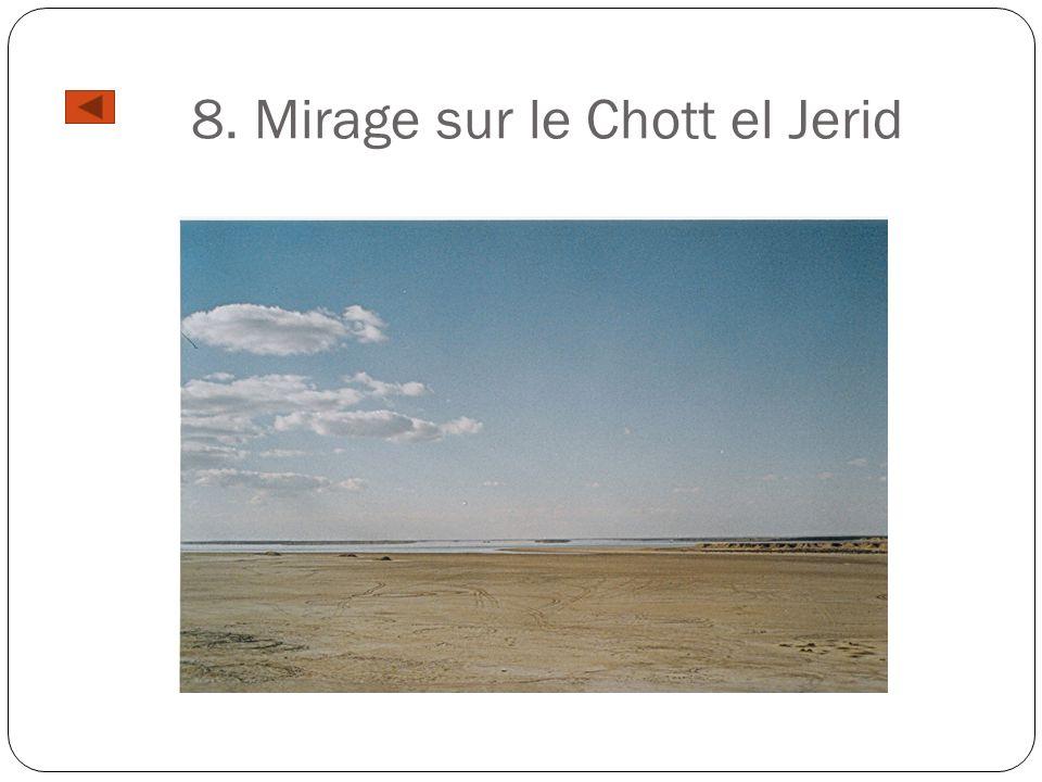 8. Mirage sur le Chott el Jerid