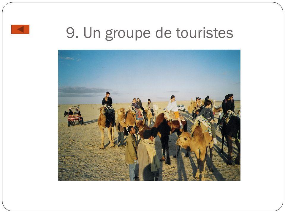 9. Un groupe de touristes