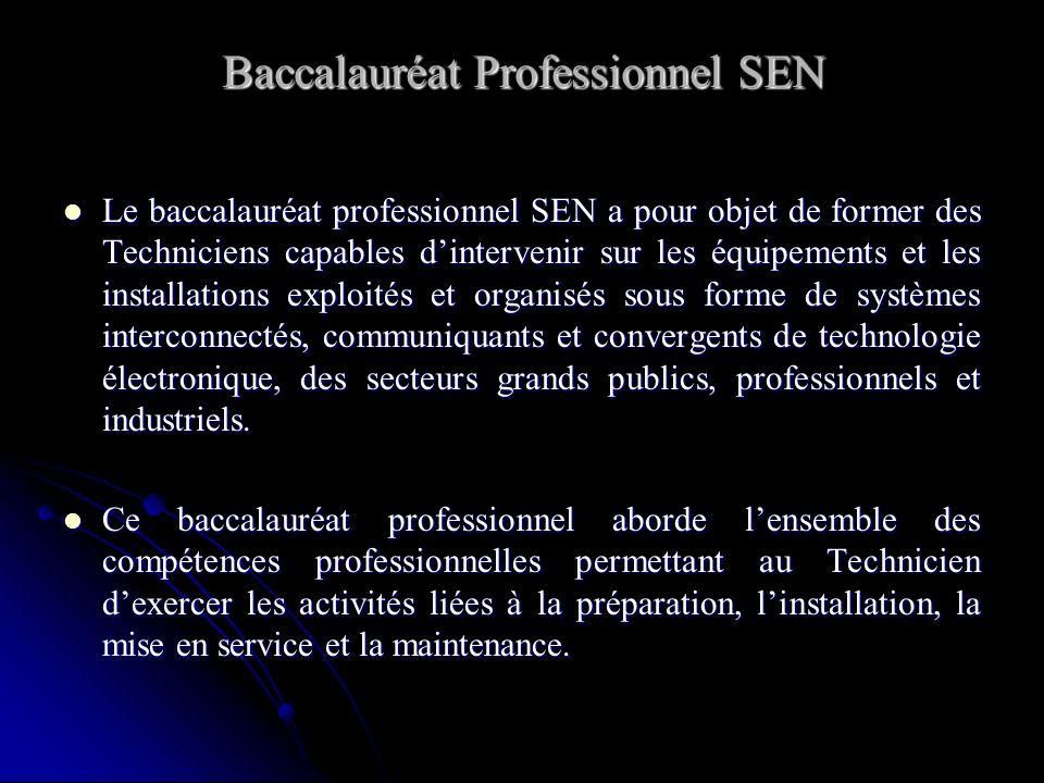 Baccalauréat Professionnel SEN Le baccalauréat professionnel SEN a pour objet de former des Techniciens capables dintervenir sur les équipements et le