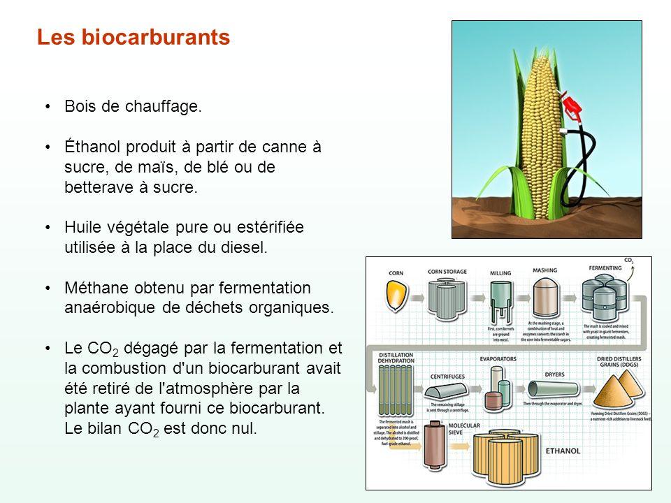 Les biocarburants Bois de chauffage. Éthanol produit à partir de canne à sucre, de maïs, de blé ou de betterave à sucre. Huile végétale pure ou estéri