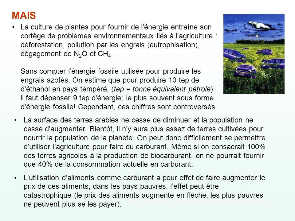 La culture de plantes pour fournir de lénergie entraîne son cortège de problèmes environnementaux liés à lagriculture : déforestation, pollution par l