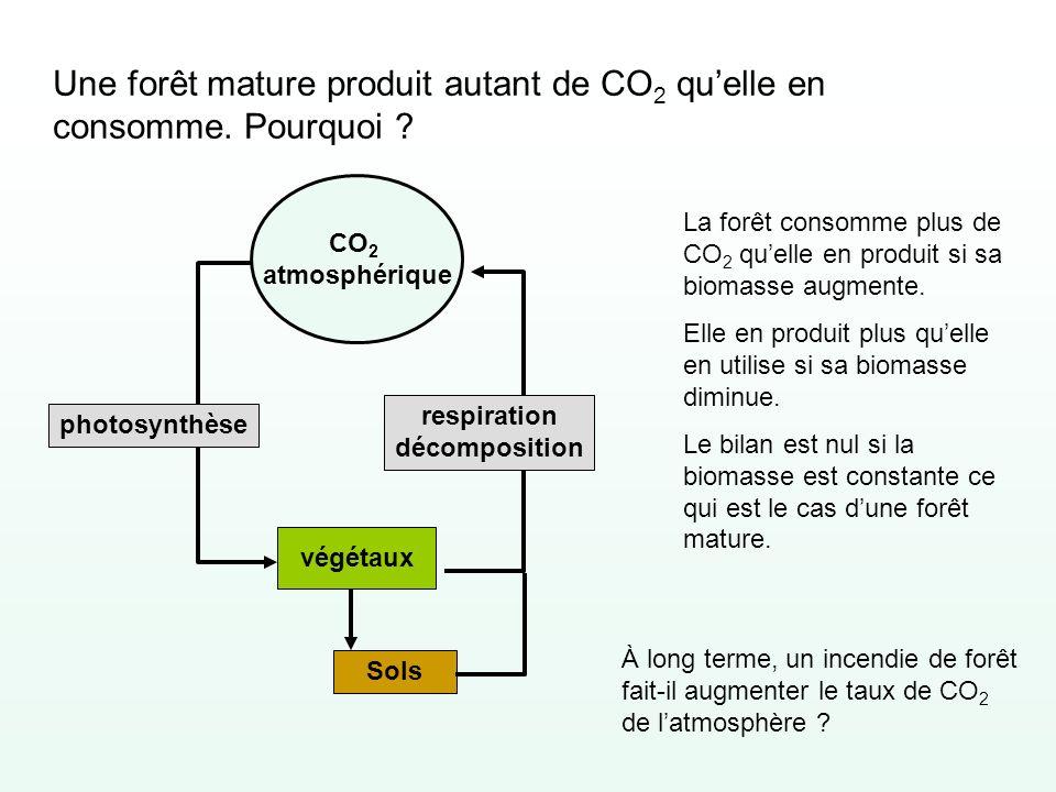 Une forêt mature produit autant de CO 2 quelle en consomme. Pourquoi ? CO 2 atmosphérique végétaux photosynthèse Sols respiration décomposition La for