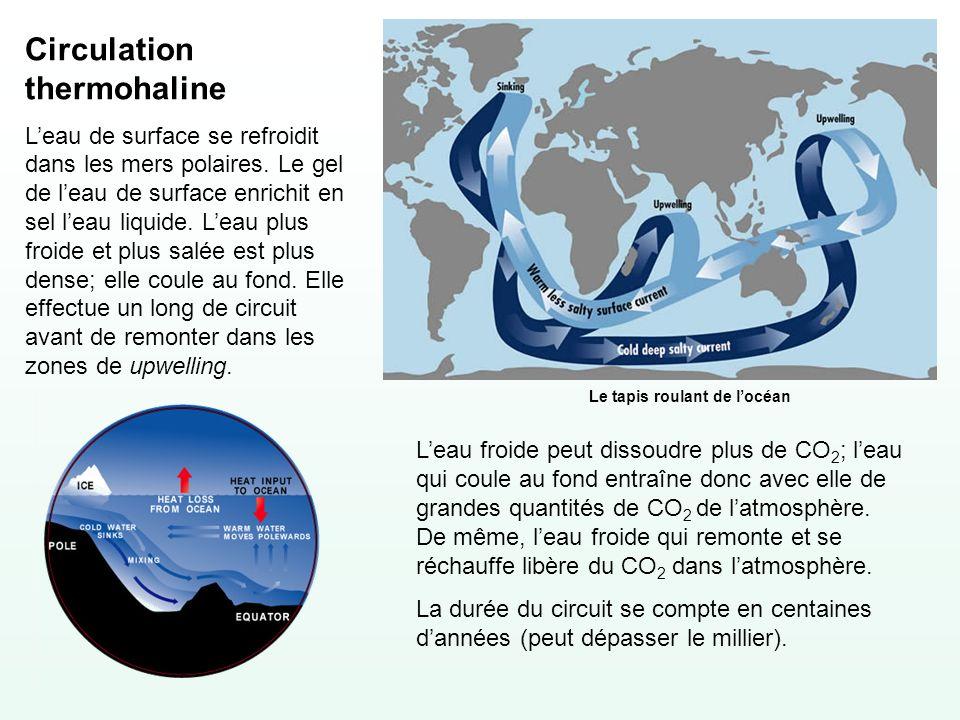 Circulation thermohaline Leau de surface se refroidit dans les mers polaires. Le gel de leau de surface enrichit en sel leau liquide. Leau plus froide